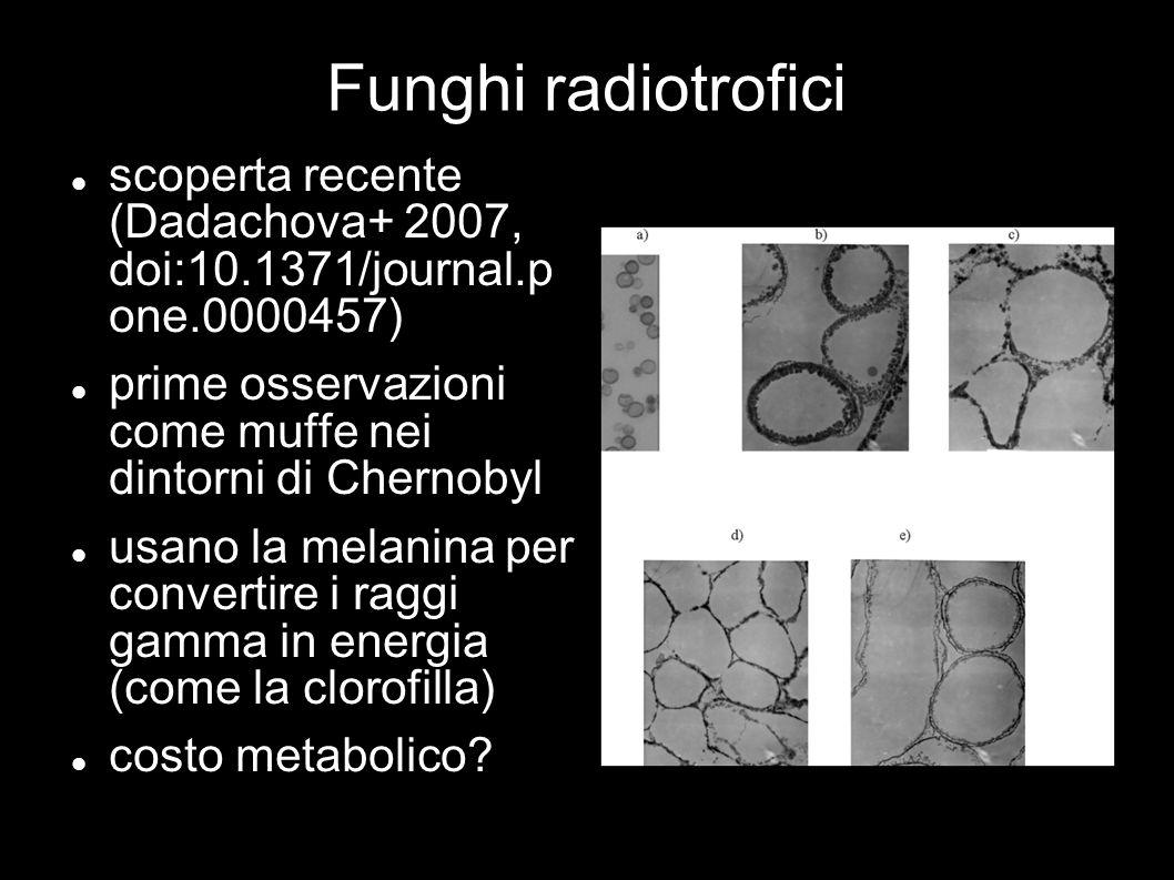 Funghi radiotrofici scoperta recente (Dadachova+ 2007, doi:10.1371/journal.p one.0000457)