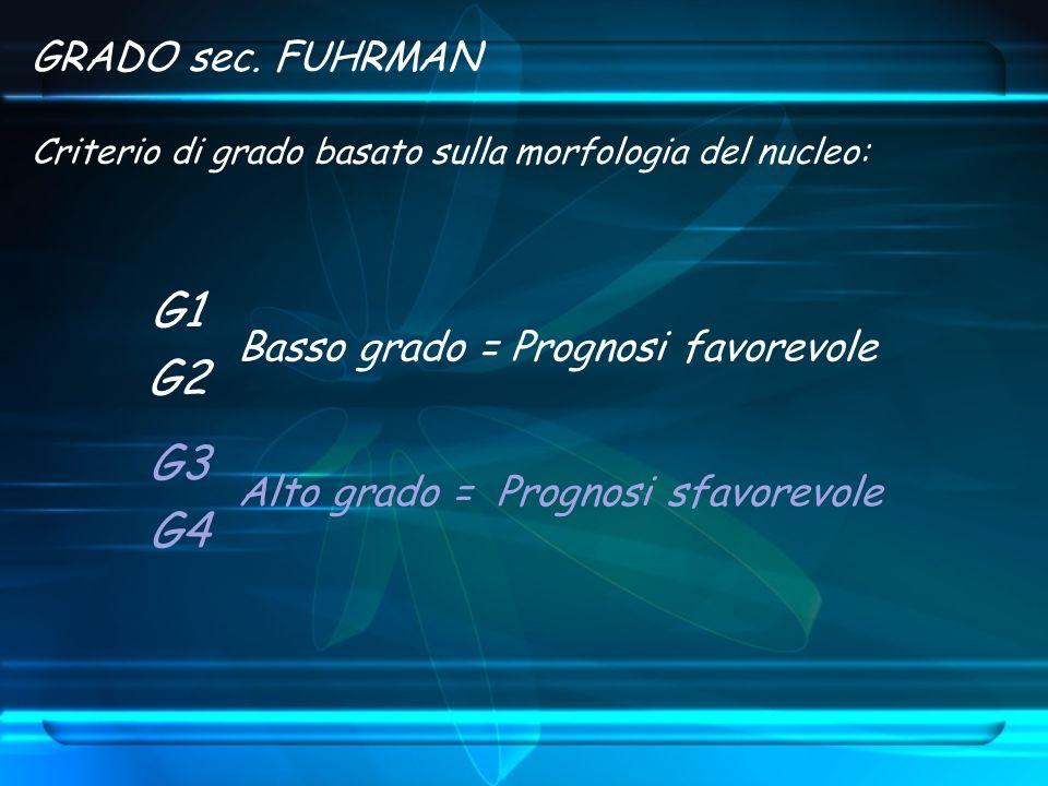 GRADO sec. FUHRMAN Criterio di grado basato sulla morfologia del nucleo: