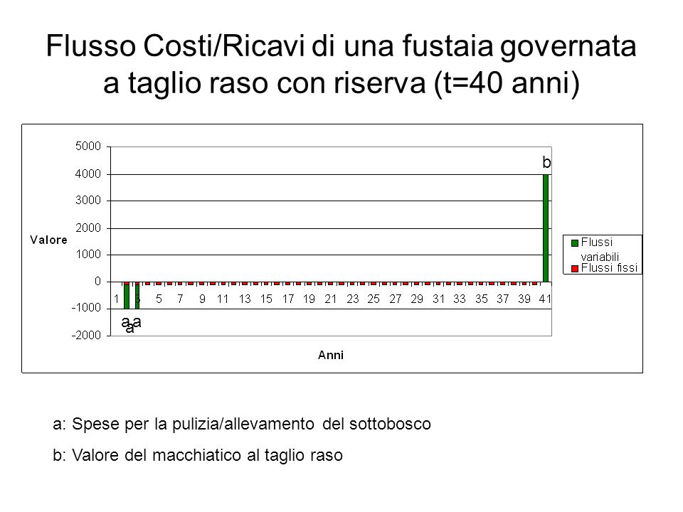 Flusso Costi/Ricavi di una fustaia governata a taglio raso con riserva (t=40 anni)