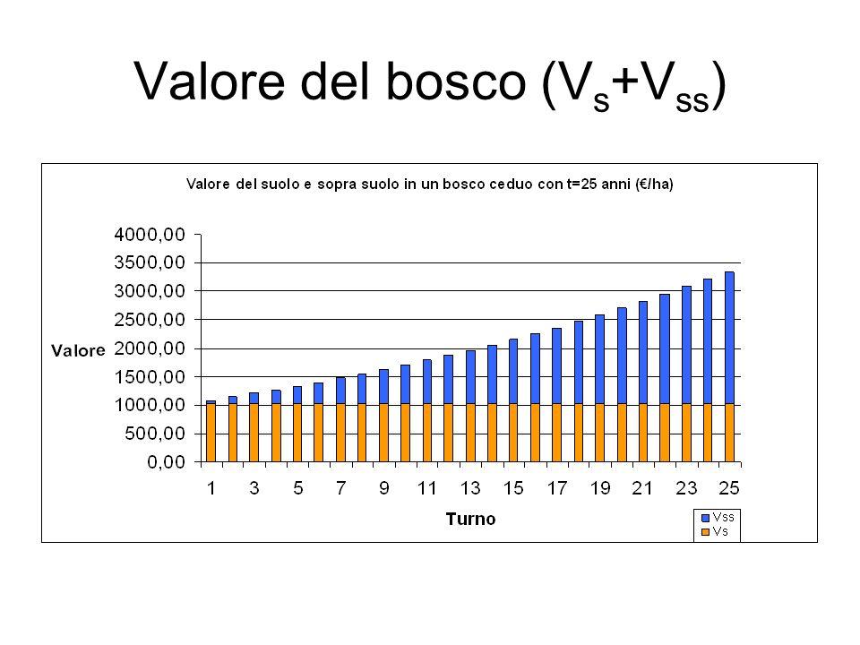 Valore del bosco (Vs+Vss)