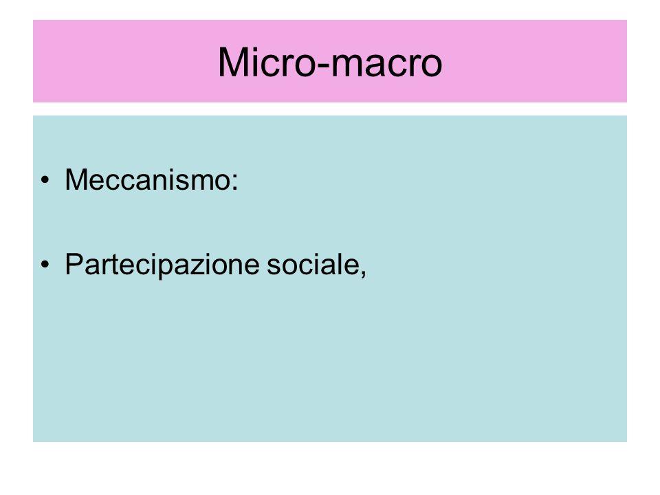 Micro-macro Meccanismo: Partecipazione sociale,