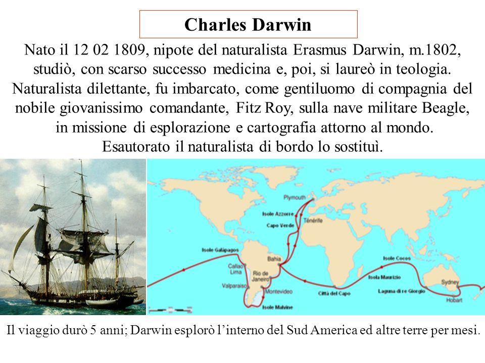 Charles Darwin Nato il 12 02 1809, nipote del naturalista Erasmus Darwin, m.1802, studiò, con scarso successo medicina e, poi, si laureò in teologia.