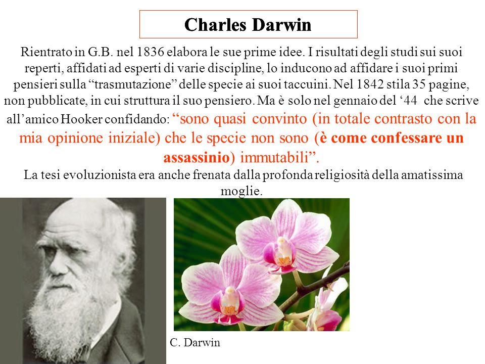 Charles Darwin Charles Darwin Charles Darwin