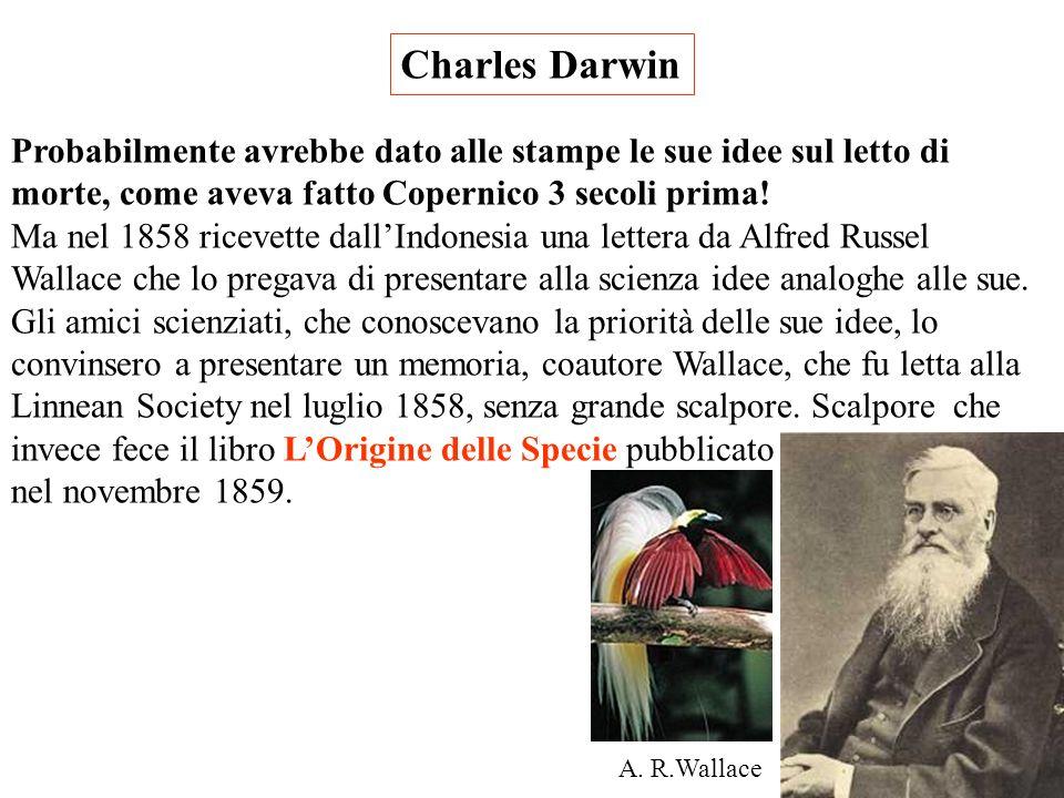 Charles Darwin Probabilmente avrebbe dato alle stampe le sue idee sul letto di morte, come aveva fatto Copernico 3 secoli prima!