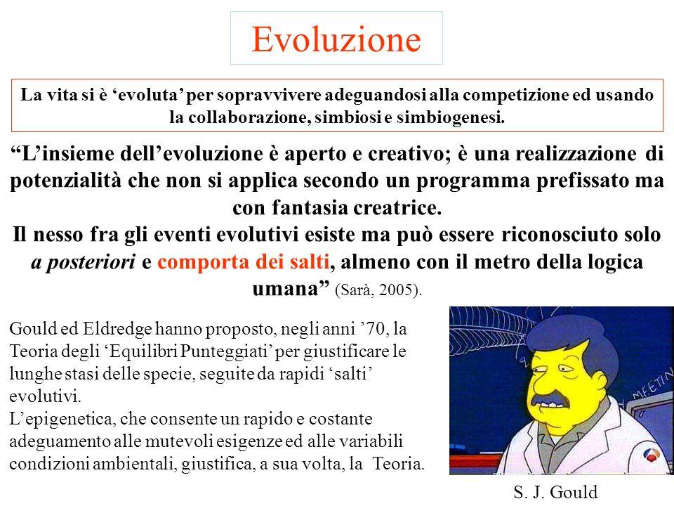Evoluzione La vita si è 'evoluta' per sopravvivere adeguandosi alla competizione ed usando la collaborazione, simbiosi e simbiogenesi.