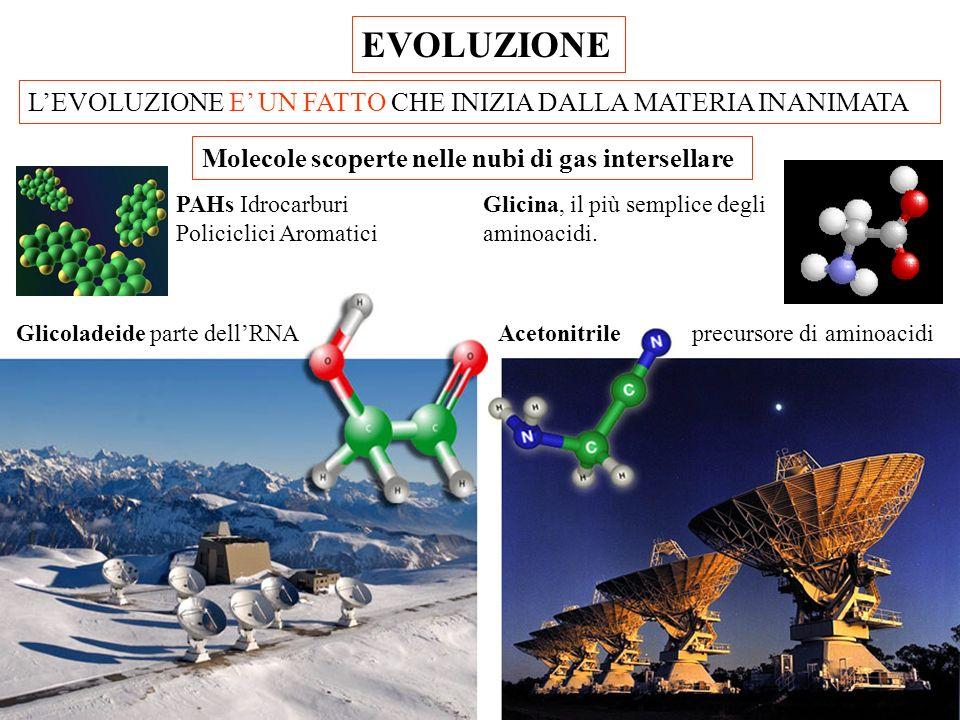 EVOLUZIONE L'EVOLUZIONE E' UN FATTO CHE INIZIA DALLA MATERIA INANIMATA