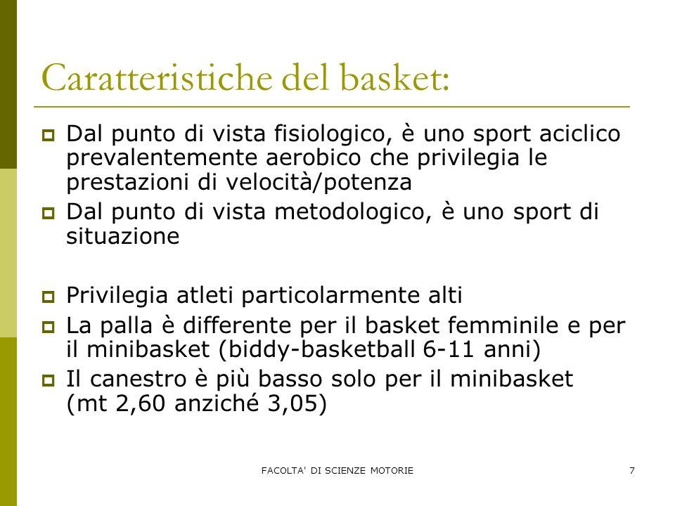 Caratteristiche del basket: