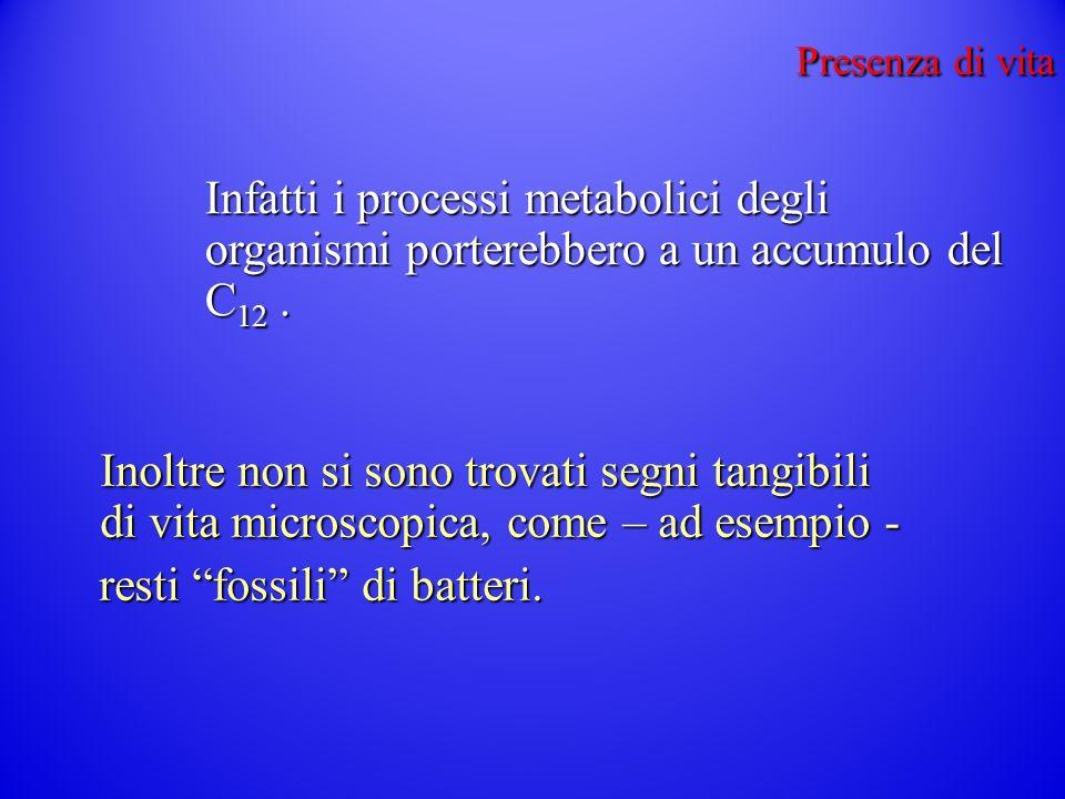 resti fossili di batteri.