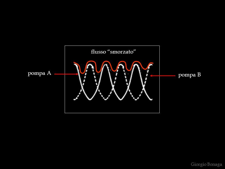 flusso smorzato pompa A pompa B Giorgio Bonaga