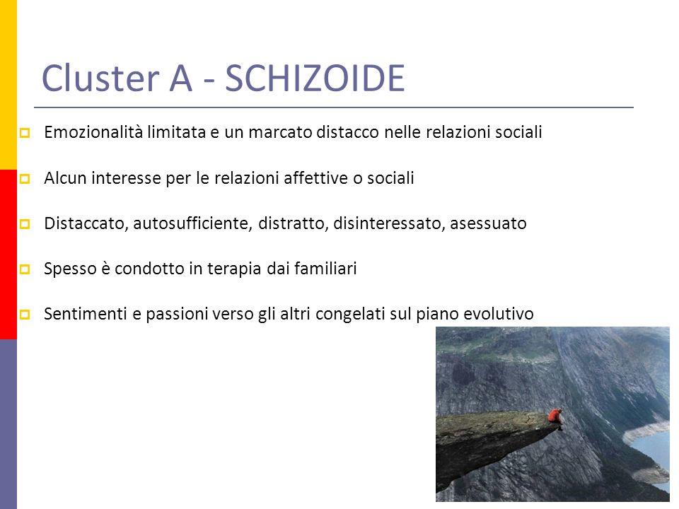 Cluster A - SCHIZOIDE Emozionalità limitata e un marcato distacco nelle relazioni sociali. Alcun interesse per le relazioni affettive o sociali.