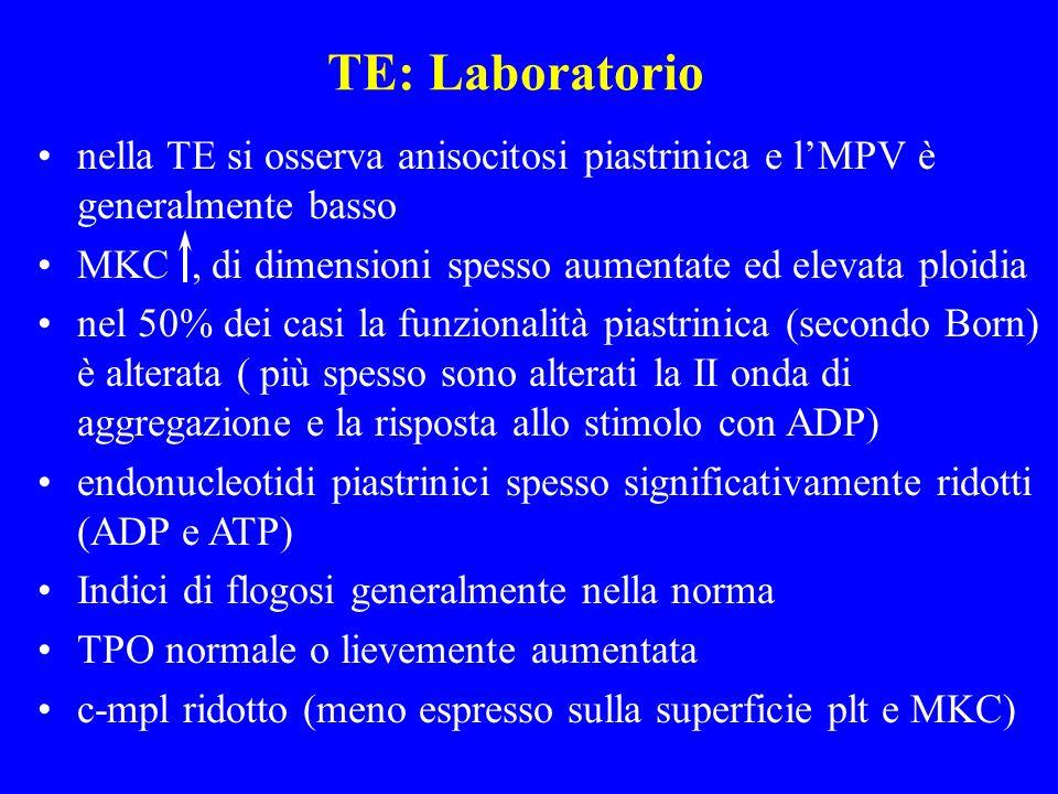 TE: Laboratorionella TE si osserva anisocitosi piastrinica e l'MPV è generalmente basso. MKC , di dimensioni spesso aumentate ed elevata ploidia.