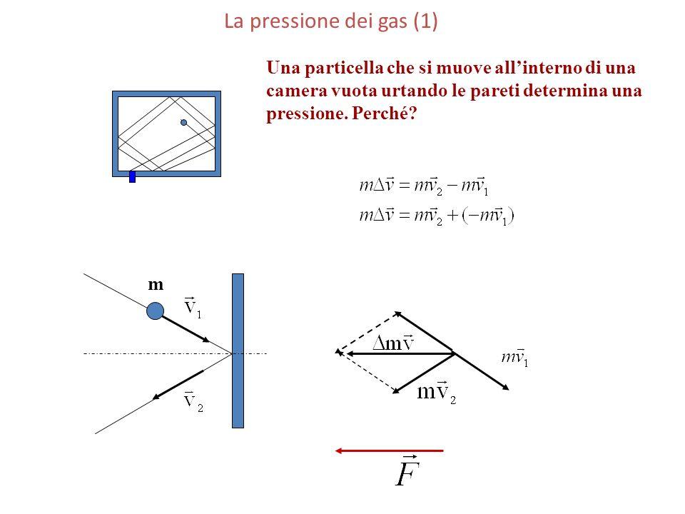 La pressione dei gas (1) m. Una particella che si muove all'interno di una. camera vuota urtando le pareti determina una.