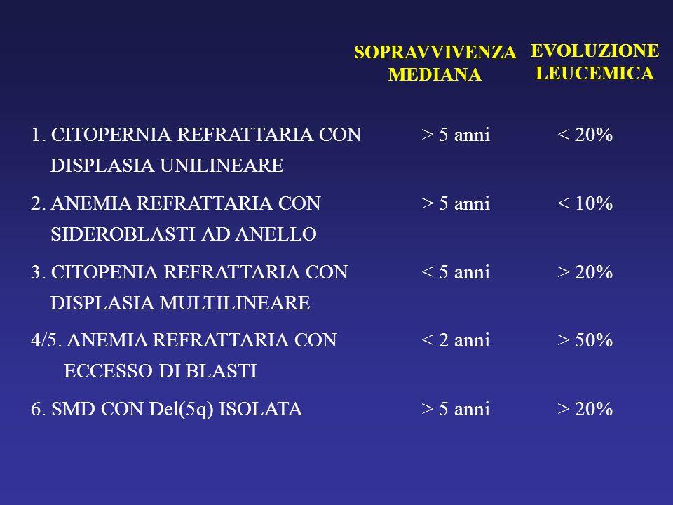 1. CITOPERNIA REFRATTARIA CON DISPLASIA UNILINEARE > 5 anni
