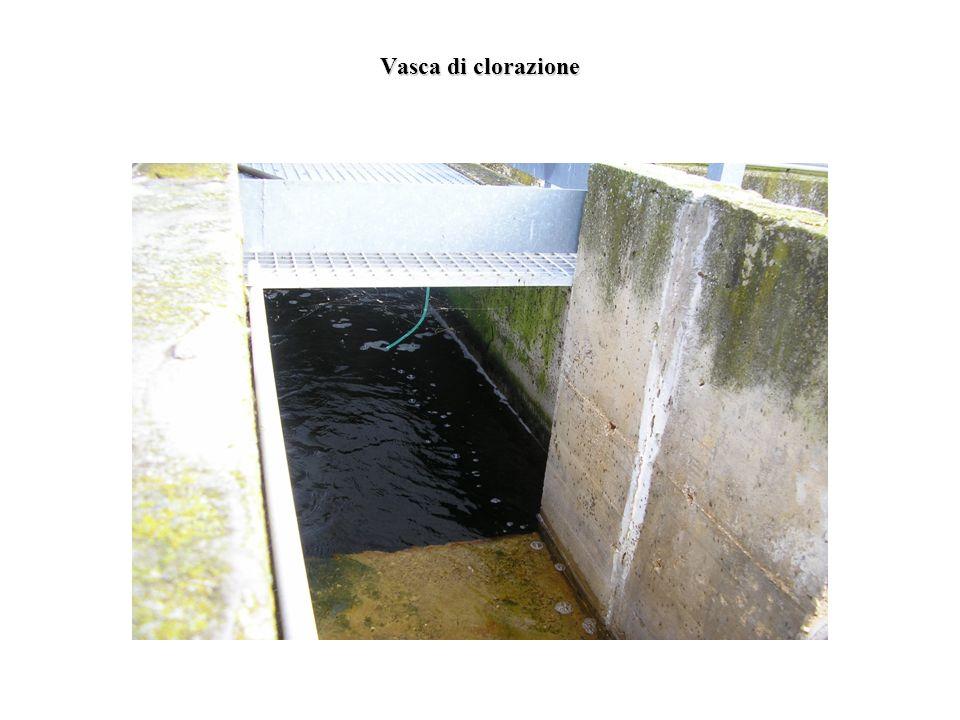 Vasca di clorazione