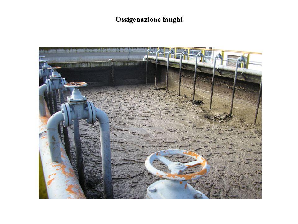 Ossigenazione fanghi