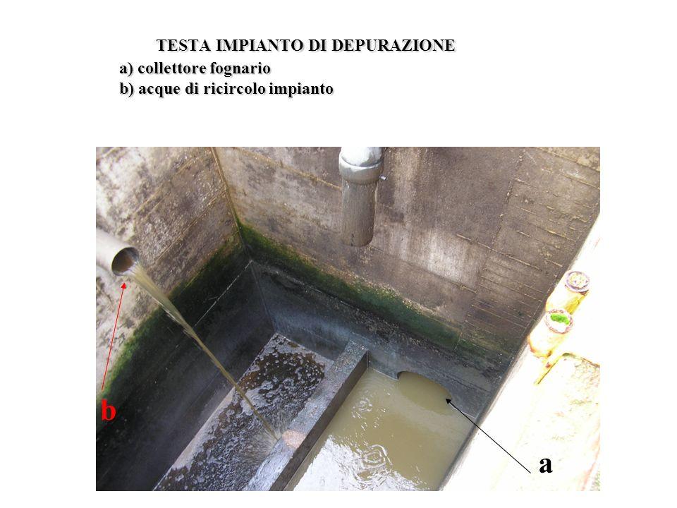 TESTA IMPIANTO DI DEPURAZIONE a) collettore fognario b) acque di ricircolo impianto