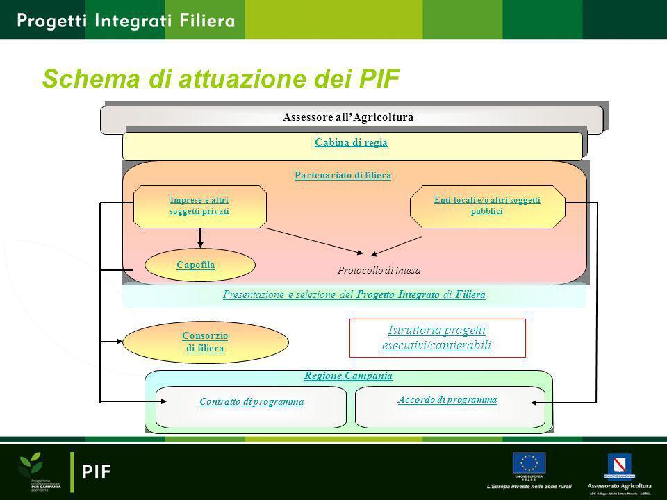 Schema di attuazione dei PIF