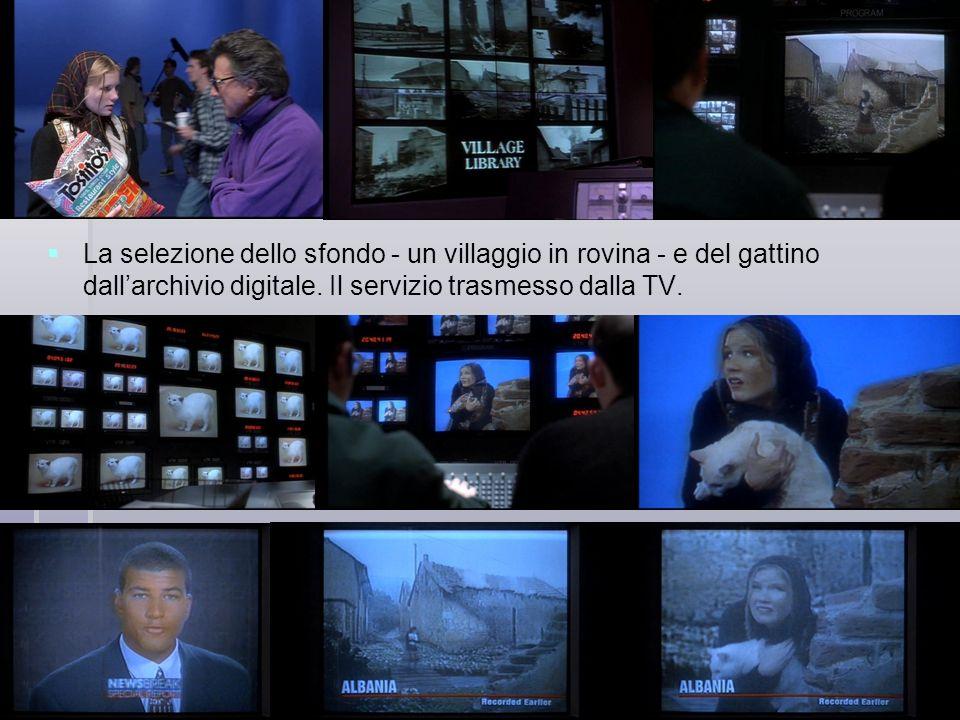 La selezione dello sfondo - un villaggio in rovina - e del gattino dall'archivio digitale.