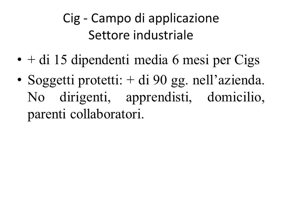 Cig - Campo di applicazione Settore industriale