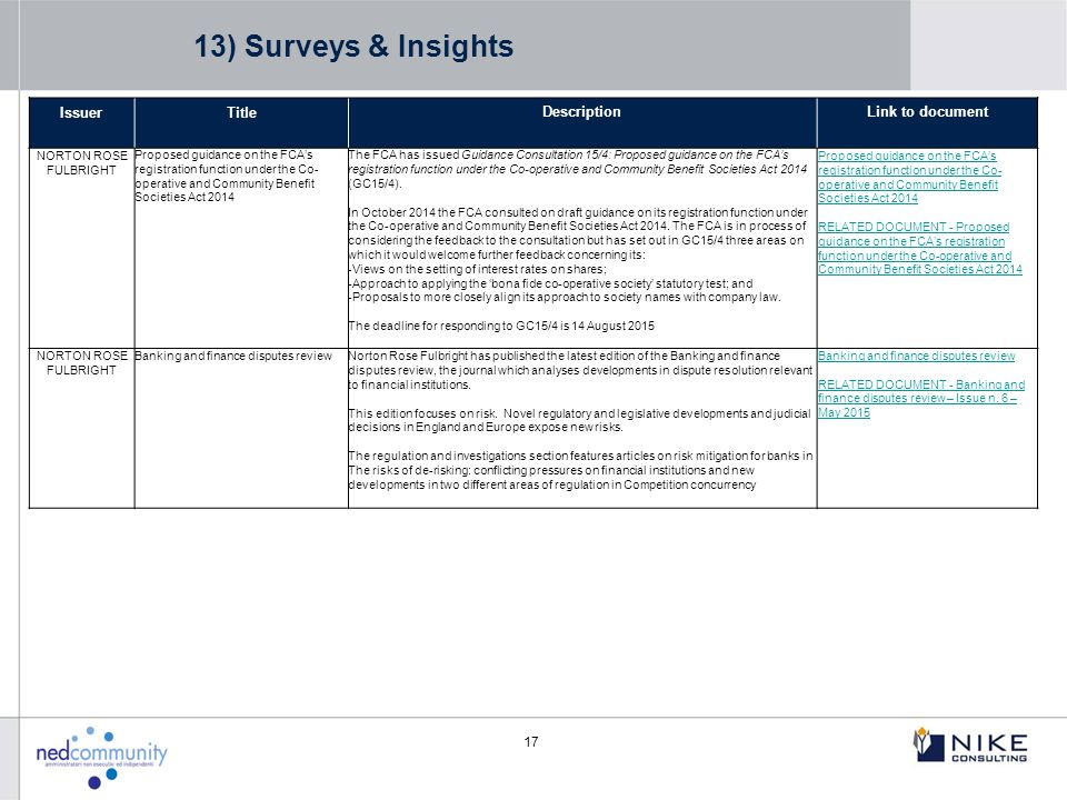 13) Surveys & Insights Issuer Title Description Link to document