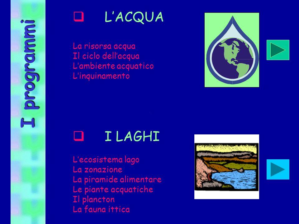 I programmi L'ACQUA I LAGHI La risorsa acqua Il ciclo dell'acqua