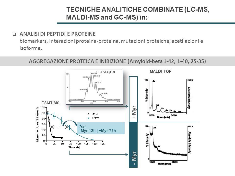 AGGREGAZIONE PROTEICA E INIBIZIONE (Amyloid-beta 1-42, 1-40, 25-35)