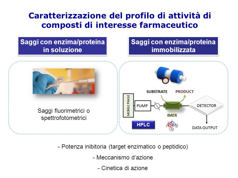 Caratterizzazione del profilo di attività di composti di interesse farmaceutico