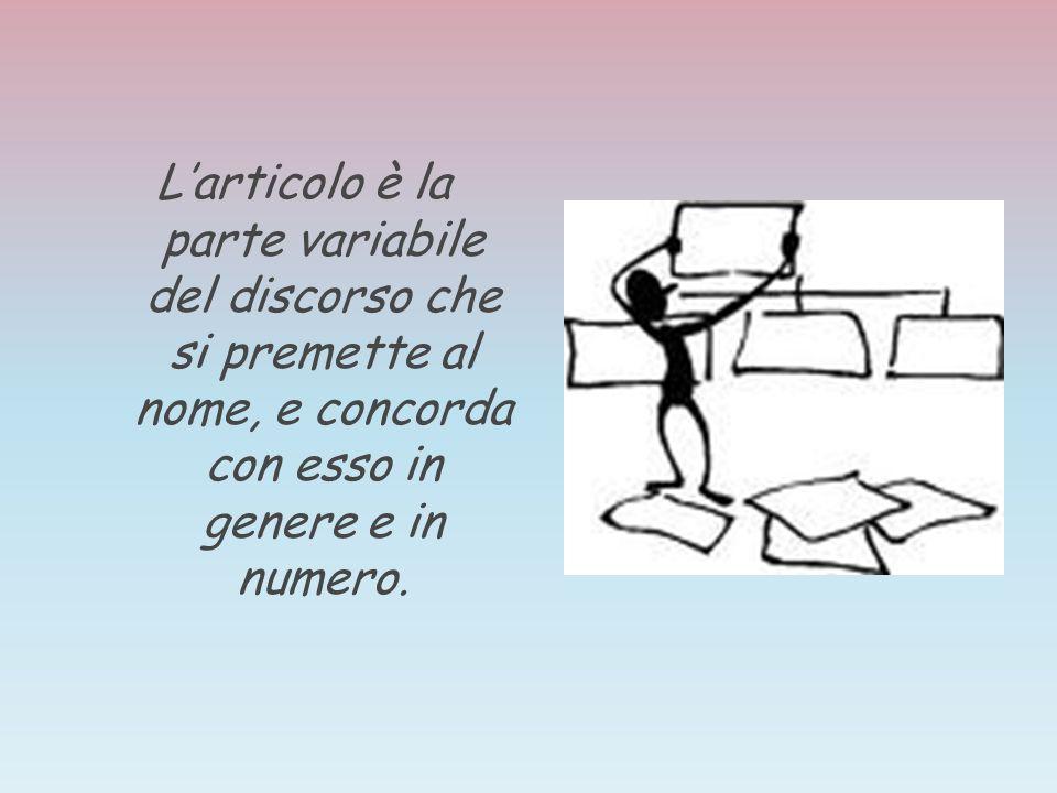 L'articolo è la parte variabile del discorso che si premette al nome, e concorda con esso in genere e in numero.