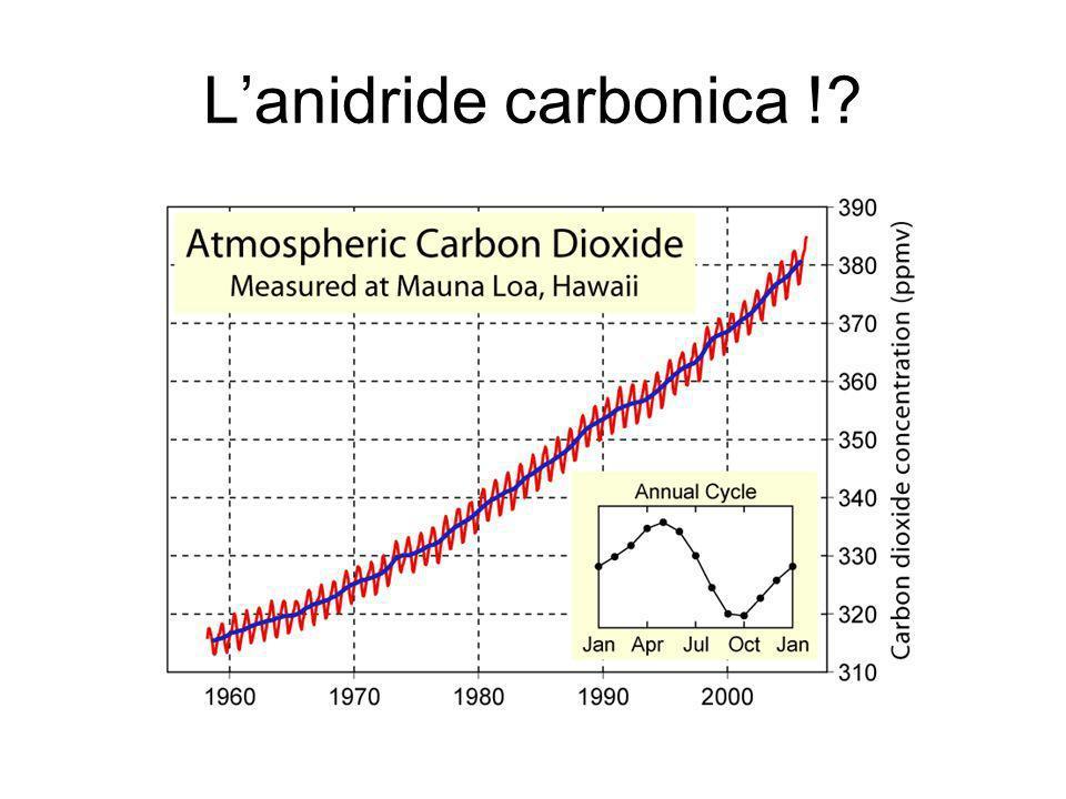 L'anidride carbonica !