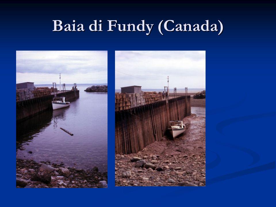 Baia di Fundy (Canada)