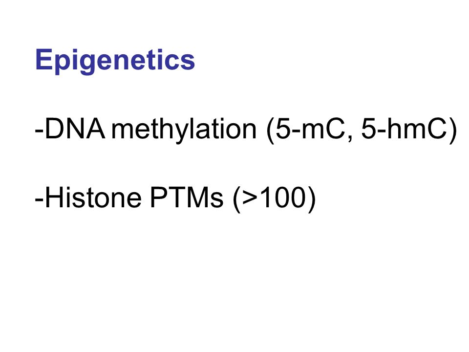 Epigenetics -DNA methylation (5-mC, 5-hmC) -Histone PTMs (>100)