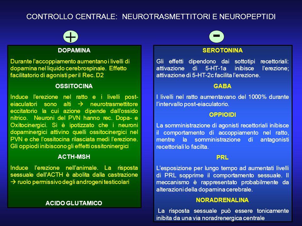 CONTROLLO CENTRALE: NEUROTRASMETTITORI E NEUROPEPTIDI