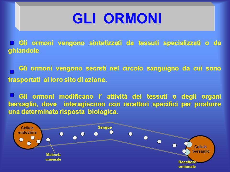 GLI ORMONI Gli ormoni vengono sintetizzati da tessuti specializzati o da ghiandole.