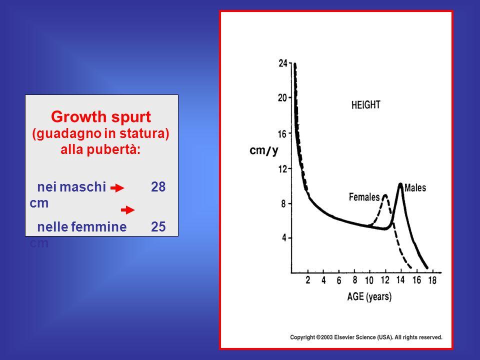 Growth spurt (guadagno in statura) alla pubertà: nei maschi 28 cm