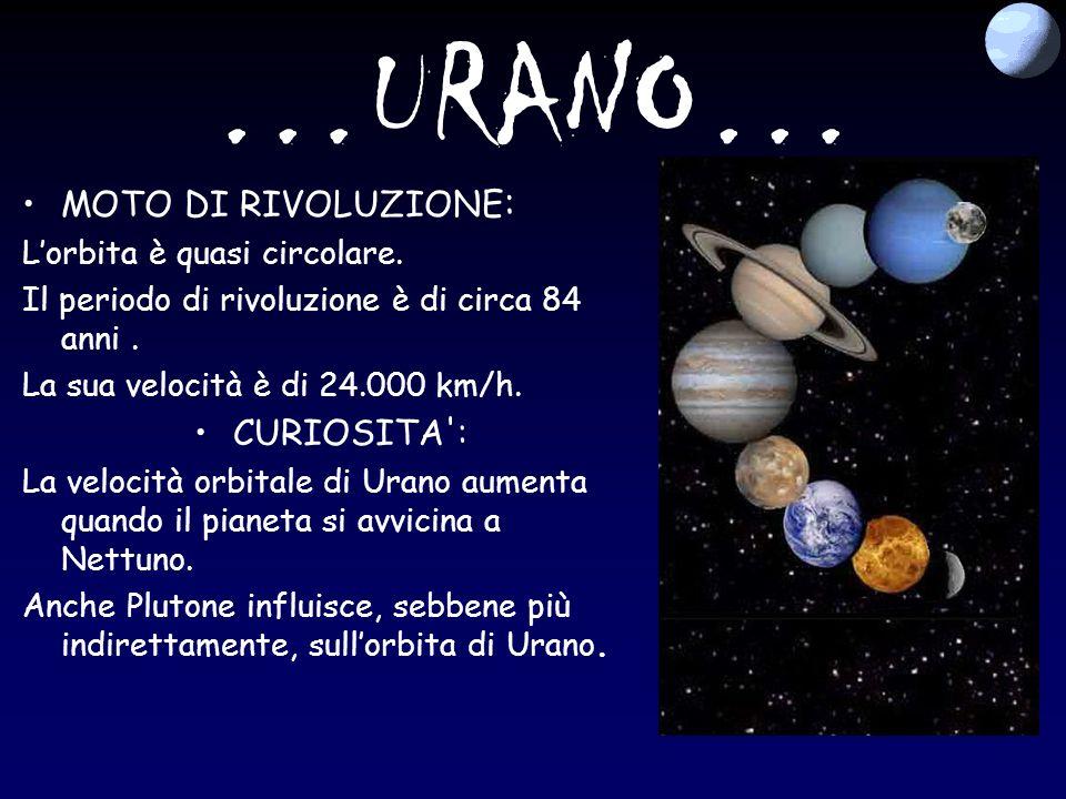 …URANO… MOTO DI RIVOLUZIONE: CURIOSITA : L'orbita è quasi circolare.