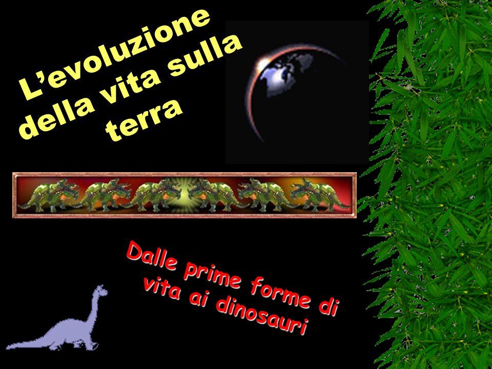L'evoluzione della vita sulla terra