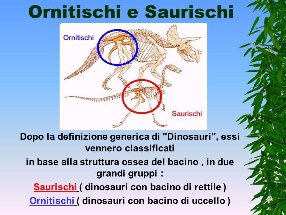 Ornitischi e Saurischi