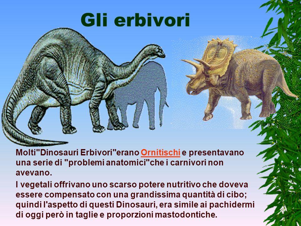 Gli erbivori Molti Dinosauri Erbivori erano Ornitischi e presentavano una serie di problemi anatomici che i carnivori non avevano.