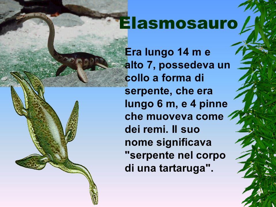 Elasmosauro