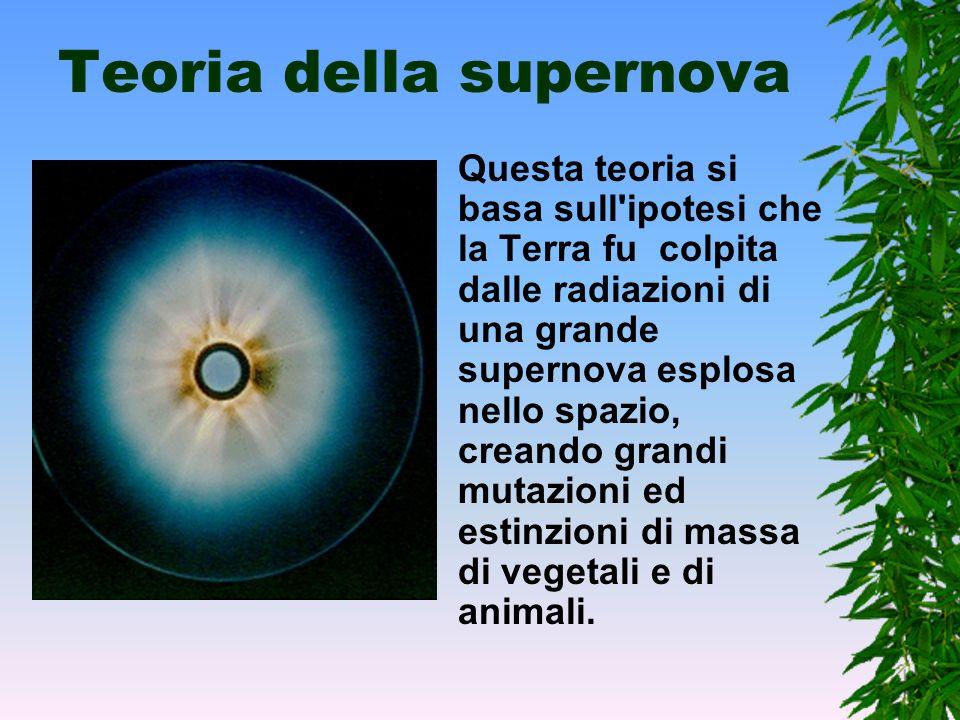 Teoria della supernova