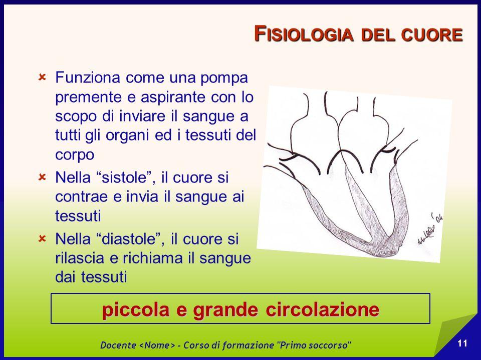 Fisiologia del cuore piccola e grande circolazione