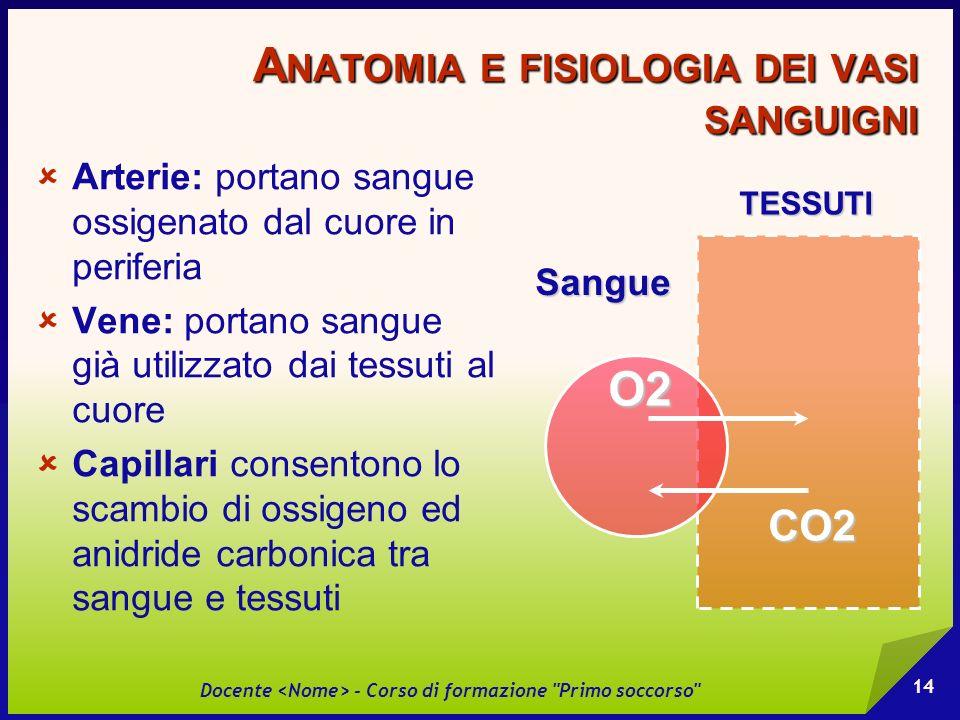 Anatomia e fisiologia dei vasi sanguigni