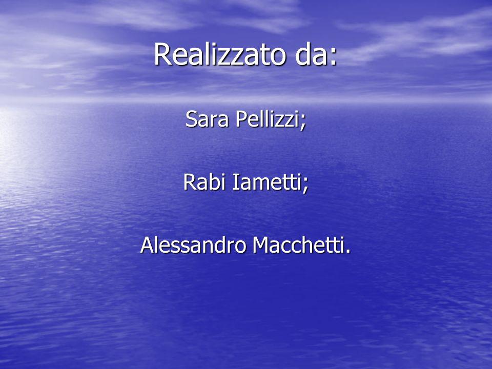 Realizzato da: Sara Pellizzi; Rabi Iametti; Alessandro Macchetti.