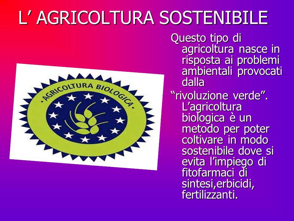 L' AGRICOLTURA SOSTENIBILE