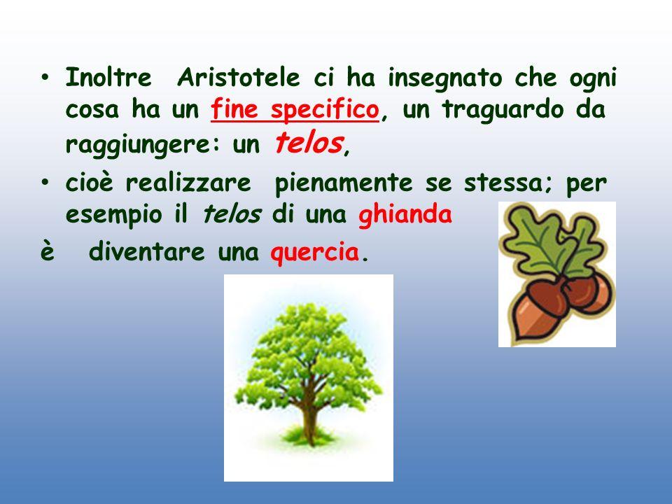 Inoltre Aristotele ci ha insegnato che ogni cosa ha un fine specifico, un traguardo da raggiungere: un telos,