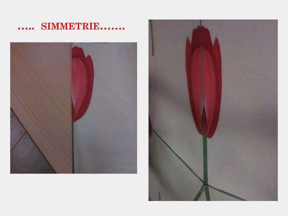 ….. simmetrie…….