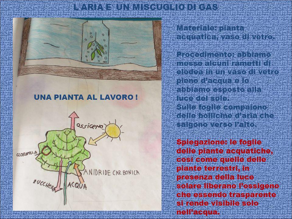 L'ARIA E' UN MISCUGLIO DI GAS