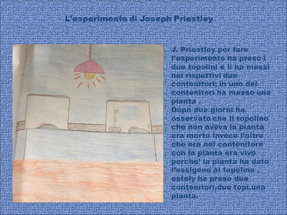 L'esperimento di Joseph Priestley