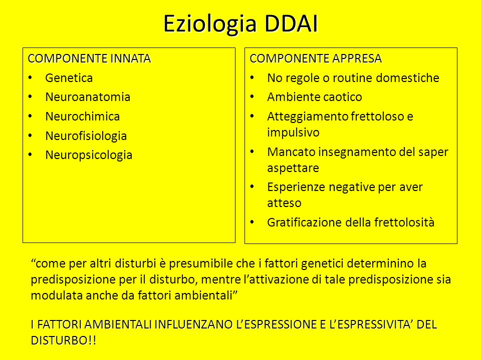 Eziologia DDAI COMPONENTE INNATA Genetica Neuroanatomia Neurochimica