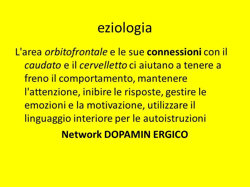 Network DOPAMIN ERGICO